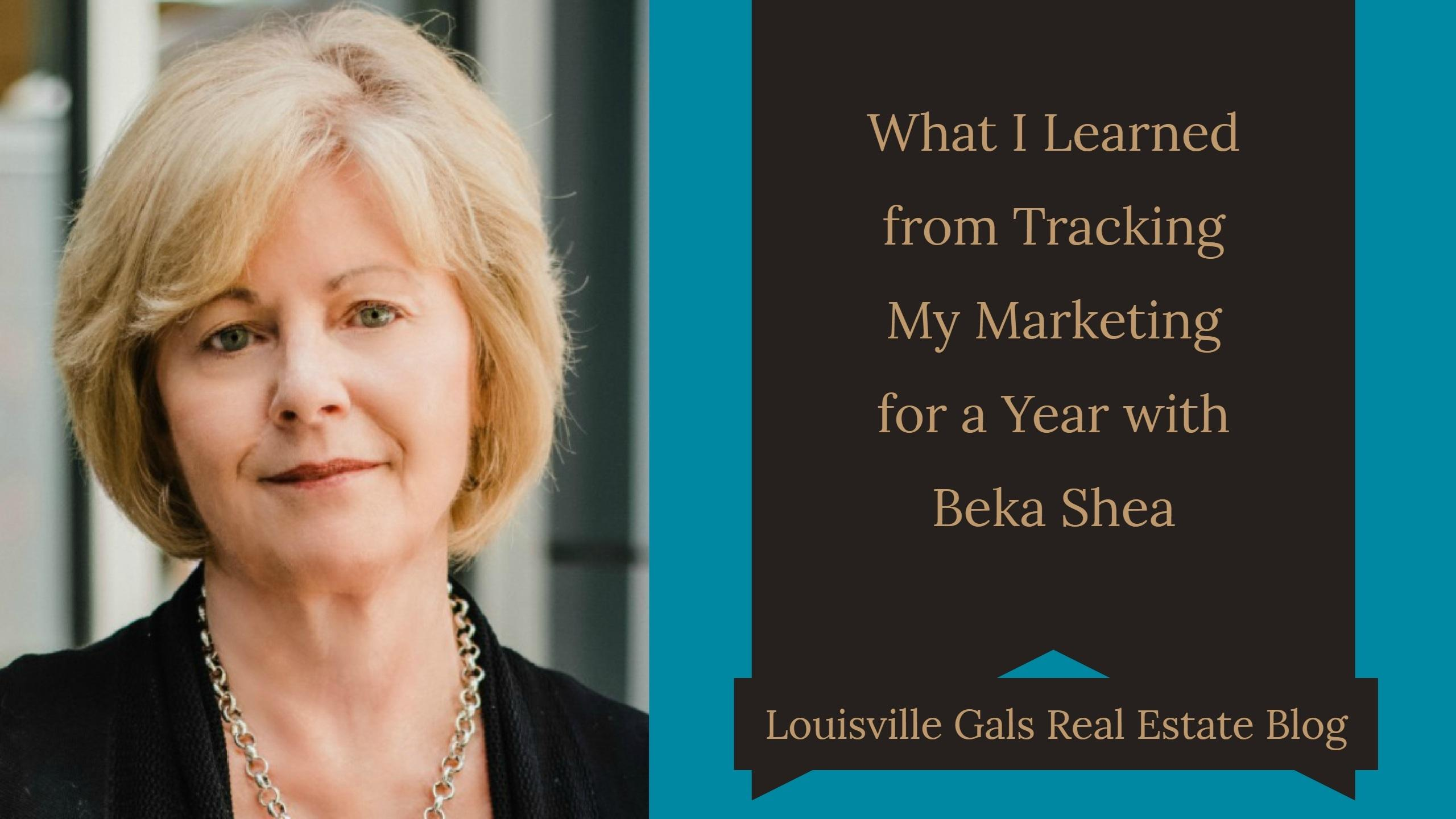 What I Learned from Tracking My Marketing in 2017 with Beka Shea (and what I plan to change) - Podcast #118