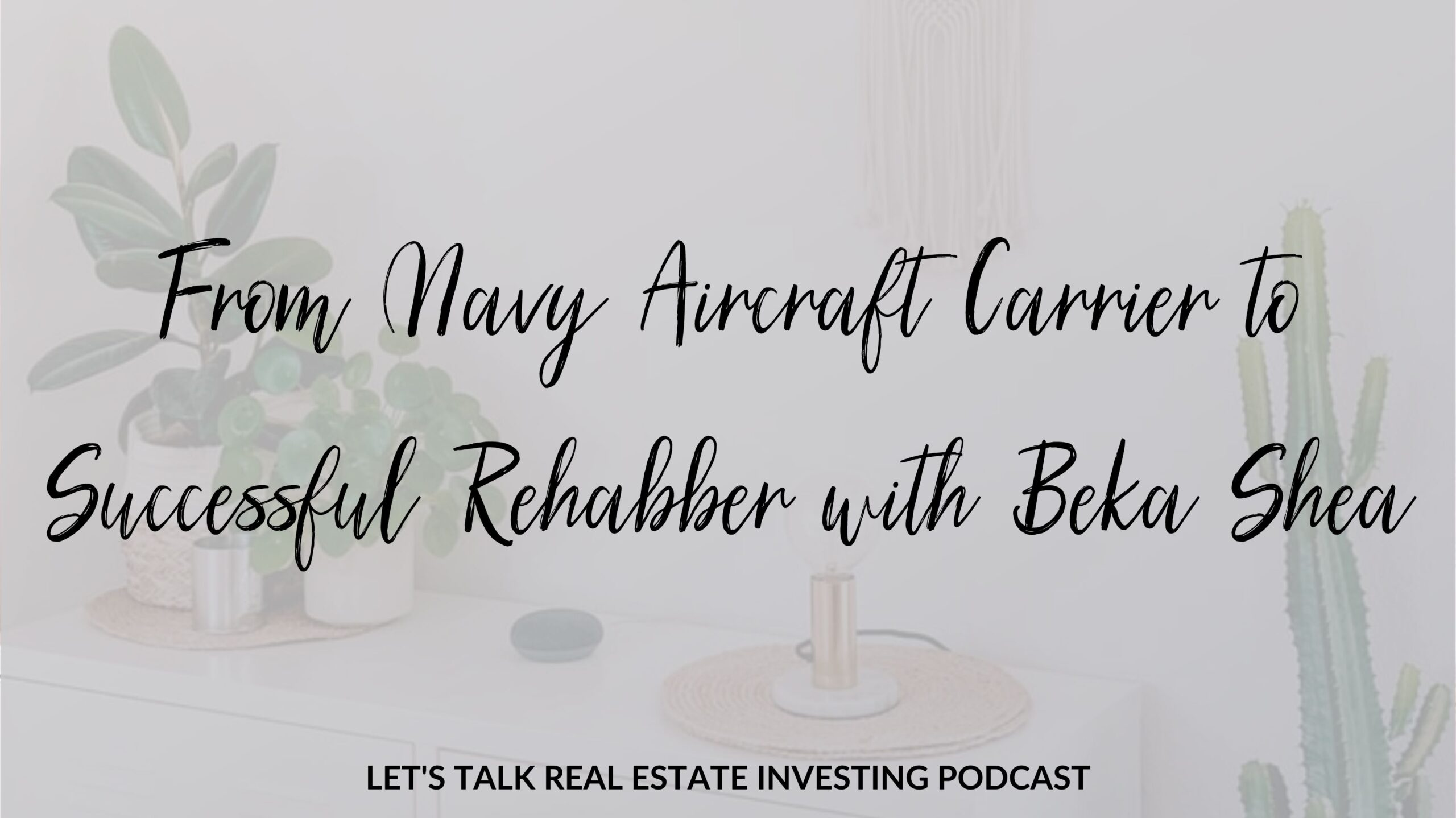 From Navy Aircraft Carrier to Successful Rehabber with Beka Shea